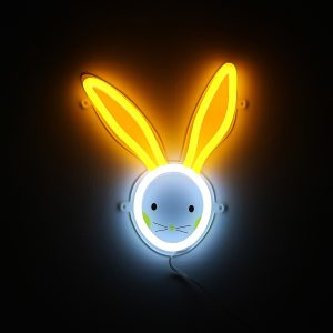 Foto neones conejo
