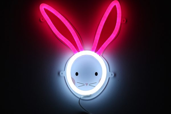 Foto neones conejo rosa